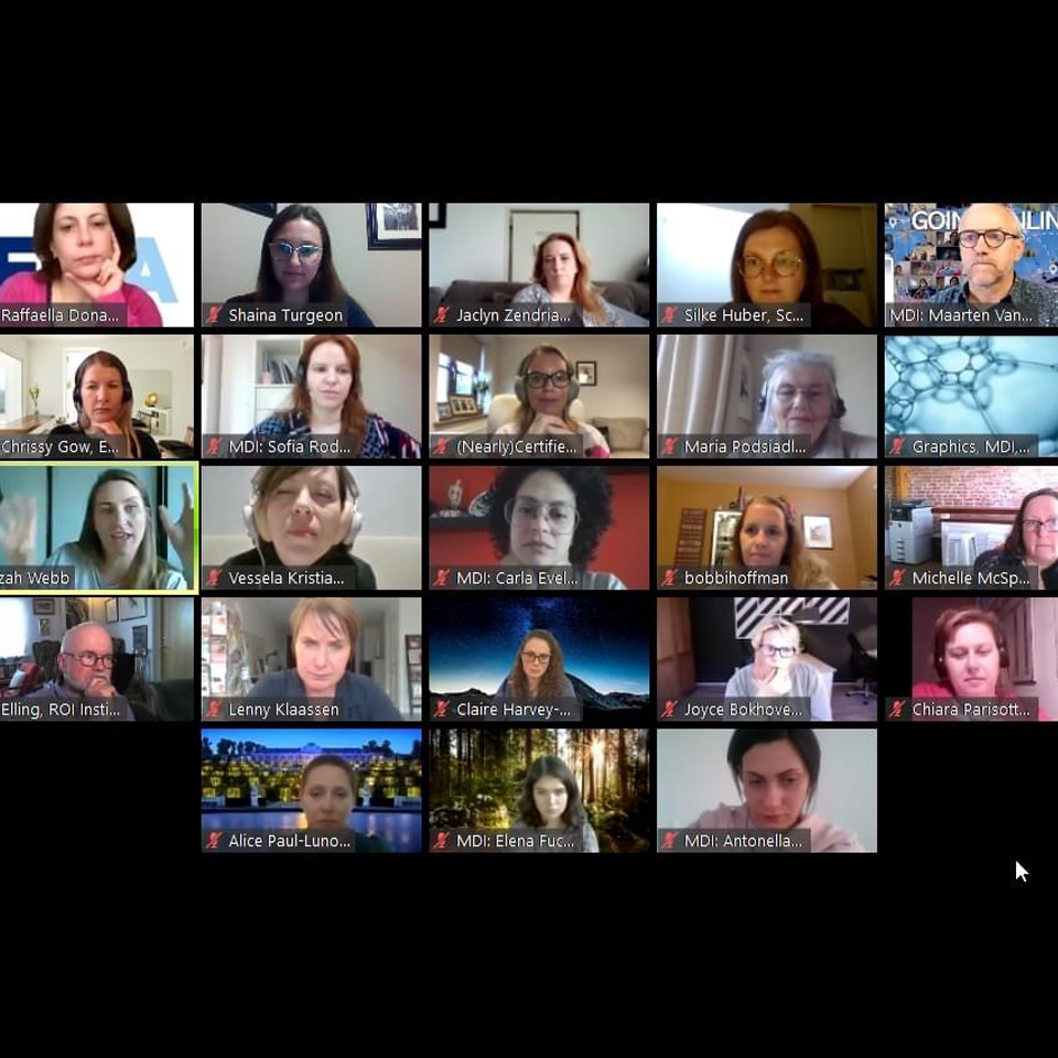 Certified Online Meeting Design Course with participants from around the world